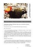 freundeskreis echinopseen - Page 5