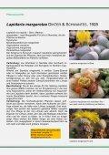 Lapidaria margaretae - FGaS - Page 7