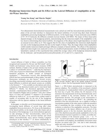 an overview of the y2k problem and its effect of on dates Complexity of this problem and its solution can be resolved succesfully only on a measurement-based software development or maintenance environment in this paper we analyse the measurement situation on the y2k area and.