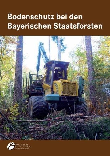 Bodenschutz bei den Bayerischen Staatsforsten - Bayerische ...