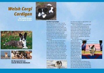 Welsh Corgi Cardigan - Landesgruppe Baden-Pfalz