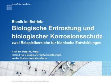 Biologische Entrostung und biologischer Korrosionsschutz