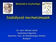 Szabályozó mechanizmusok - Semmelweis Egyetem