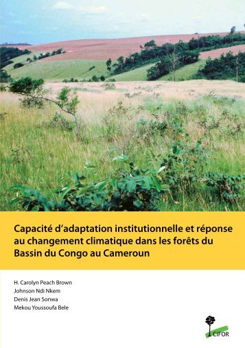 Capacité d'adaptation institutionnelle et réponse au changement ...