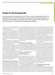 kampf um die energiewende - Claudia Kemfert