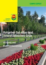 Ratgeber GaLaBau und innerstädtisches Grün - COMPO EXPERT