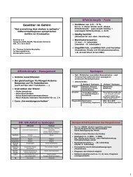 Gewitter im Gehirn (Epilepsie) - congress-info.ch | Home