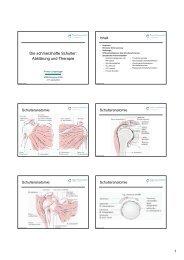 Die schmerzhafte Schulter: Abklärung und Therapie - congress-info ...