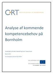 Analyse af kommende kompetencebehov på Bornholm