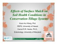 Effects of Surface Mulch on Soil Health Conditions in ... - ctahr