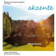 Ausgabe 3-2013 - CVJM Zentrum Hasliberg