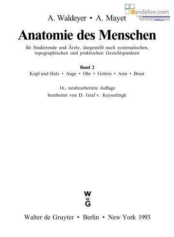 Anatomie des Menschen - Dandelon.com
