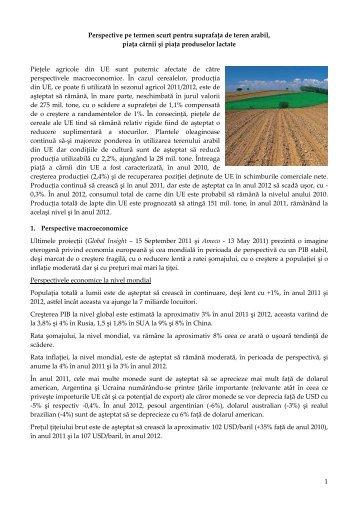 Perspective pe termen scurt pentru suprafata de teren arabil, piata ...