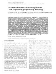 Discovery of human antibodies against the C5aR target using ... - DCU