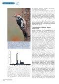 als PDF - Dachverband Deutscher Avifaunisten - Page 3