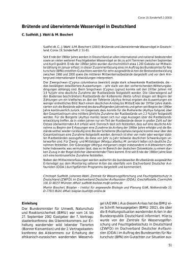 Corax 19, Sonderheft 2 - Dachverband Deutscher Avifaunisten