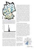 Graugänse, Gänsegeier und Kreuzschnäbel - Page 4