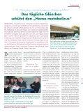 VINOMED 13.pdf - Page 3