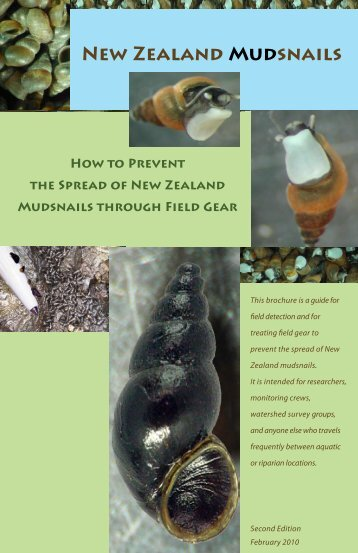 How to prevent the spread of New Zealand mudsnails through field ...