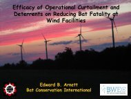 Efficacy of Operational Curtailment and Deterrents on Reducing Bat ...