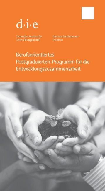 Flyer zum Postgraduierten-Programm - Deutsches Institut für ...