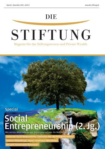 Social Entrepreneurship (2. Jg.) - Die Stiftung