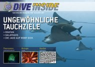 Web-Version (13.3 MB) - DiveInside