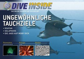 Web-Version (13.3 MB) - DiveInside