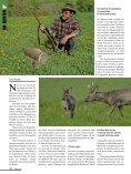 Jagd auf Gejagte - Seite 3