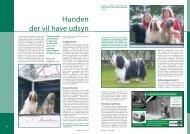 PDF-file: Tibetansk Terrier - Dansk Kennel Klub