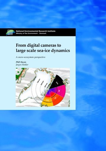 From digital cameras to large scale sea-ice dynamics