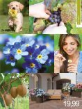 7. Pflanzen - Seite 3