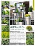 7. Pflanzen - Seite 5