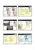 Ablauf Informationsveranstaltung 1 Vorbereitung Gesamtrevision 2 ... - Page 5