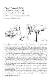 Fugle i Danmark 1996 - Dansk Ornitologisk Forening