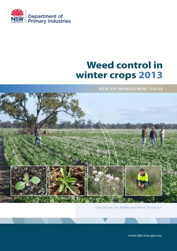 Weed control in winter crops 2013 - NSW Department of Primary ...