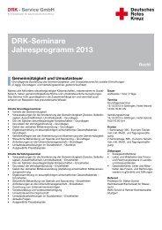 """Krankenwagen Arzt Sani Magnetschild /""""DRK /"""" mit Rahmen 30 x 8 cm Magnetfolie"""
