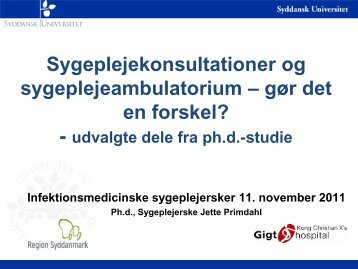 Slides Jette Primdahl
