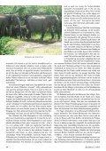 Auf Abenteuerreise in Sri Lanka - Durchblick - Seite 7