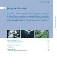 Wasser als Lebensraum 2