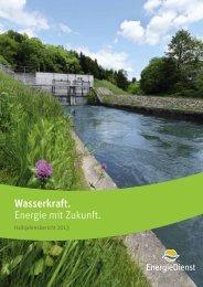 Halbjahresbericht 2013 - Energiedienst AG