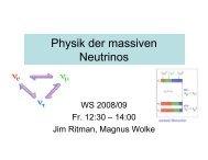 Physik der massiven Neutrinos