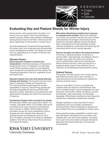 Evaluating Hay and Pasture Stands for Winter Injury - Iowa State ...
