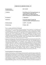 PEF396007 Forschungsberichtsblatt.pdf