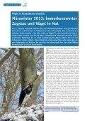 als PDF - Der Falke - Seite 2