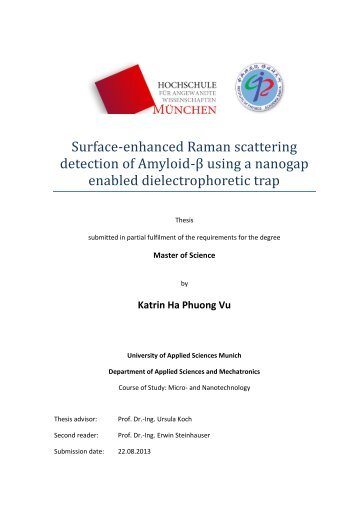 Surface-enhanced Raman scattering detection of Amyloid-β using a ...