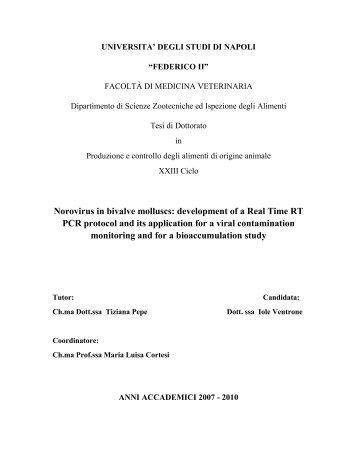 UNIVERSITA' DEGLI STUDI DI NAPOLI - FedOA - Università degli ...