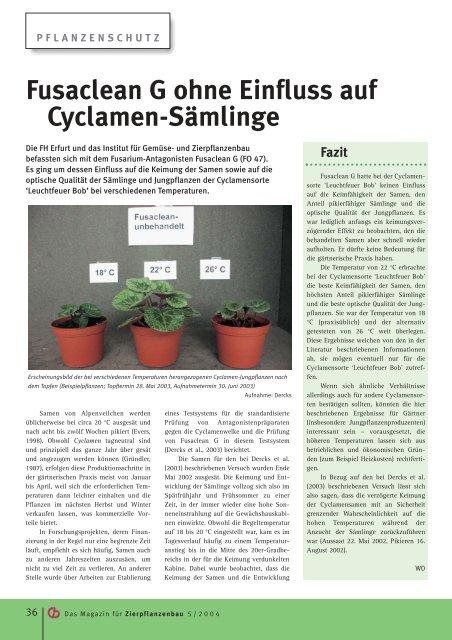 Fusaclean G ohne Einfluss auf Cyclamen-Sämlinge