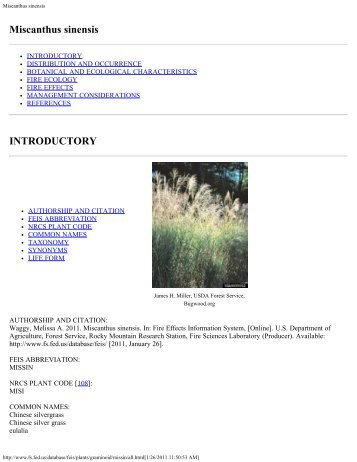 Miscanthus sinensis - Joint Fire Science Program