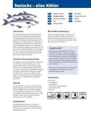 Seelachs – alias Köhler - Fisch